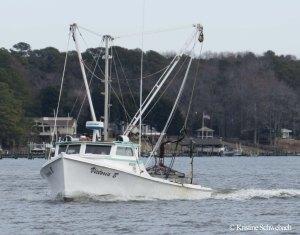 6255 workboat