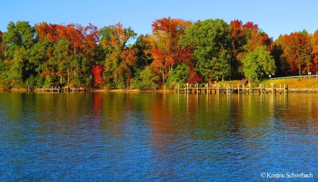 0290 autumn colors