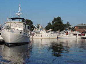 9062-trawlers
